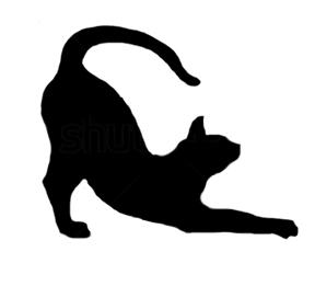 L_Cat