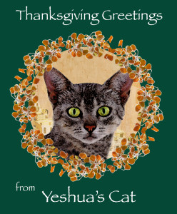 ThanksgivingCatGreetings